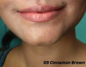 Lakme Enrich Lip Crayon Cinnamon Brown Review & Swatches