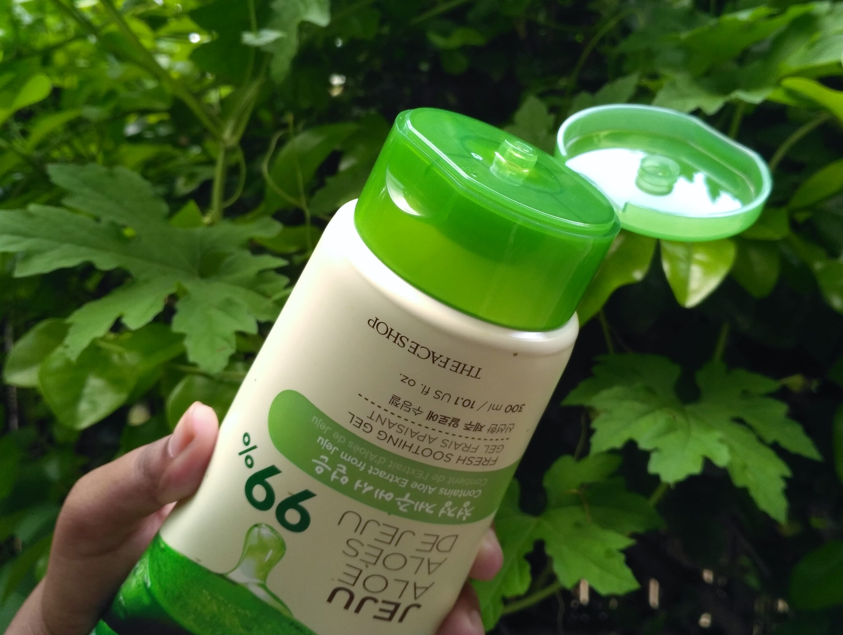The Face Shop Jeju Aloe Fresh Soothing Gel Review K Beauty Vera Shooting Nature