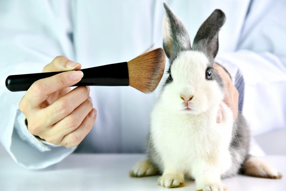 cruelty free mascara and makeup