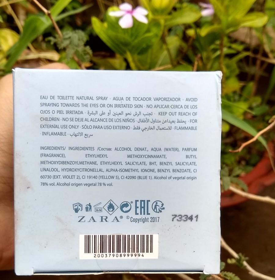 Zara Dandelion Perfume Review Price