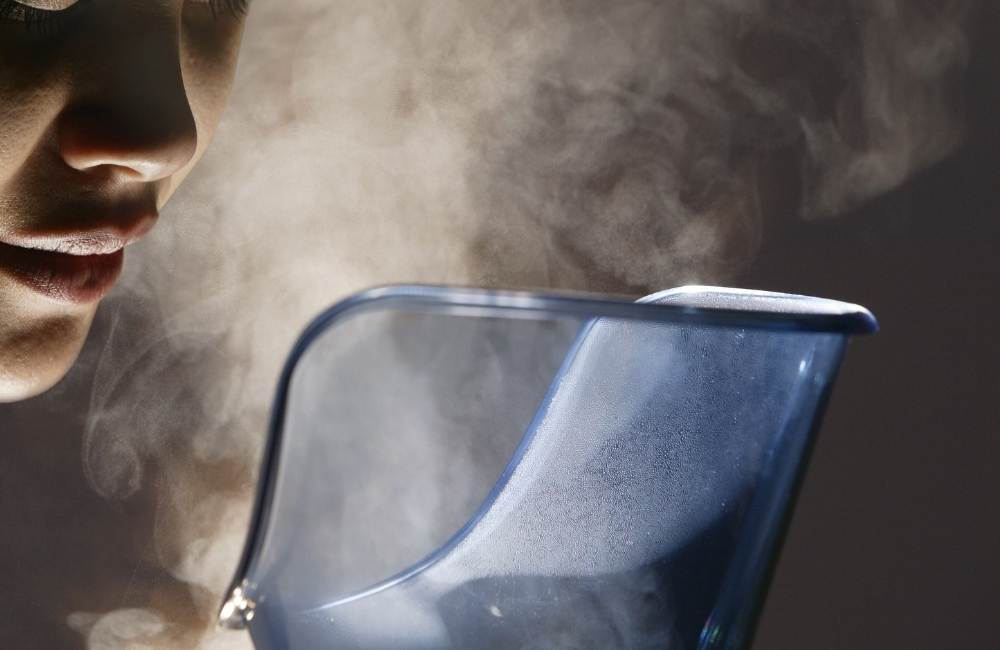 face steamer at home